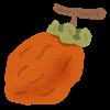 干し柿の保存方法は?冷凍した時の期間の目安と食べ方もご紹介します