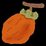 fruit_hoshigaki